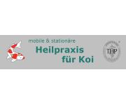 Heilpraxis für Koi
